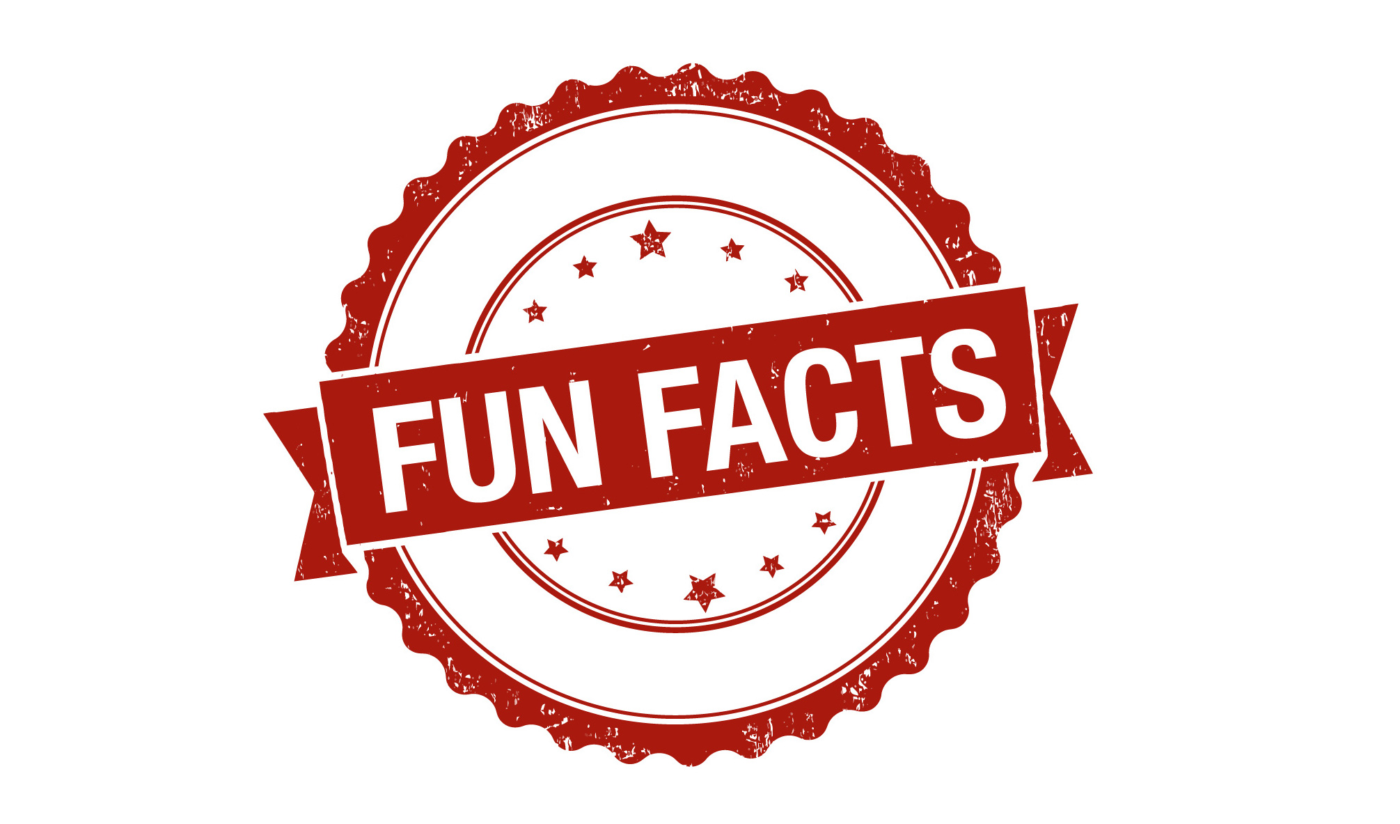 fun facts icon