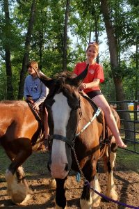 Members riding Clydesdale horses